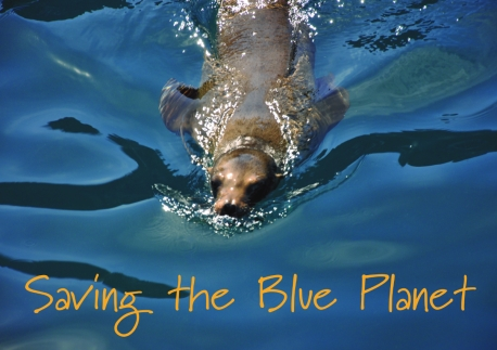 Granny Flapjax Intro. Saving the Blue Planet 1Mp